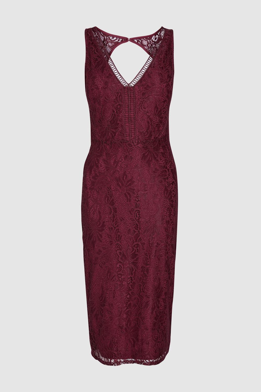 Next Lace Bodycon Dress Online | Shop EziBuy