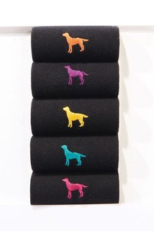 Next Labrador Embroidered Socks Five Pack