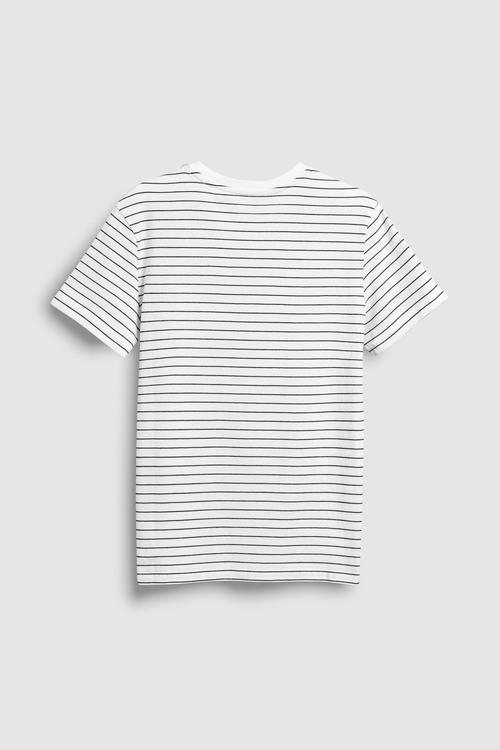 Next T-Shirt (3-16yrs)