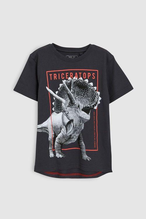 Next Dinosaur Graphic T-Shirt (3-16yrs)