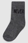 Next Slogan Socks Seven Pack (Younger)