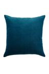 Windsor Velvet Cushion