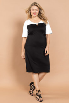 Plus Size - Sara Ponti Colourblock Dress