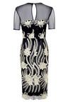 Kaleidoscope Embroidered Lace Shift Dress