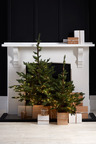 Prelit Christmas Tree with Box Planter