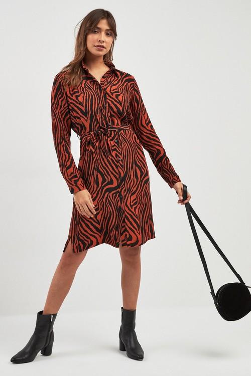 Next Zebra Animal Print Shirt Dress