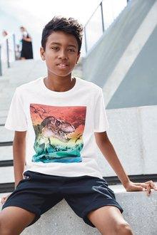 Next Sunset Dino T-Shirt (3-14yrs)