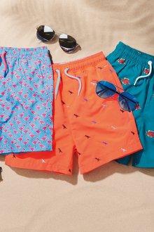Next Dino Embroidered Swim Shorts (3-16yrs)