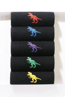 Next Dinosaur Embroidered Socks Five Pack