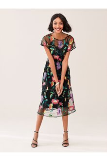 Next Floral Embroidered Mesh Midi Dress