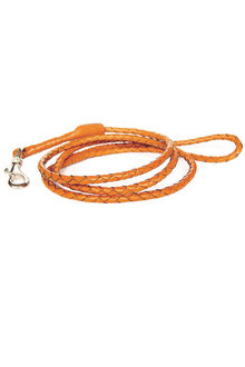Georgie Paws Windsor Dog Lead