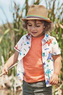 Next Bright Dino Print Shirt (3mths-7yrs)