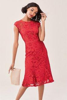 Next Lace Bodycon Dress- Tall