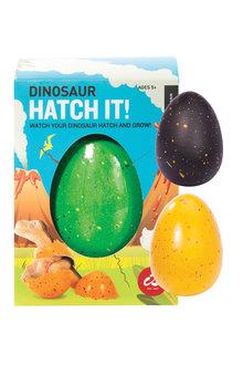 IS Hatch It! Dinosaur