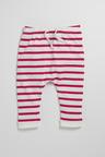 Pumpkin Patch Infants Yarn Dye Pull On Pant