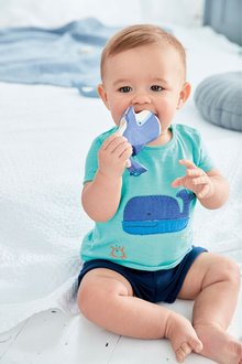 Next Whale T-Shirt And Shorts Set (0mths-2yrs)