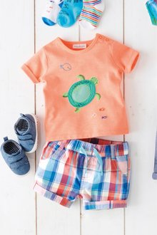 Next Turtle T-Shirt And Shorts Set (0mths-2yrs)