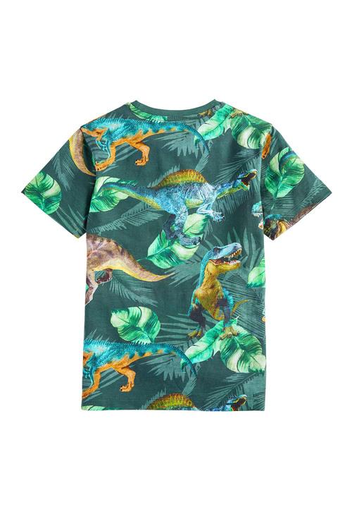 Next All Over Print Dinosaur T-Shirt (3-14yrs)