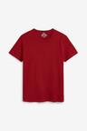 Next T-Shirts Five Pack