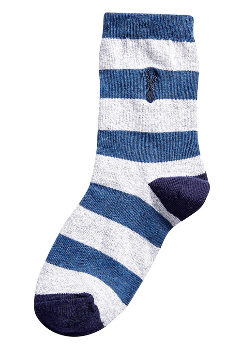 Next Stag Embroidered Rugby Stripe Socks Seven Pack (Older)