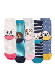 Next Dog Heel Socks Five Pack