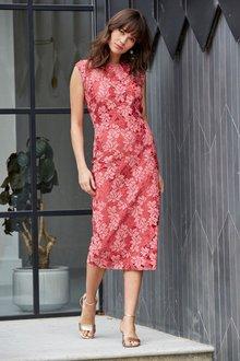 Next Lace Dress- Tall