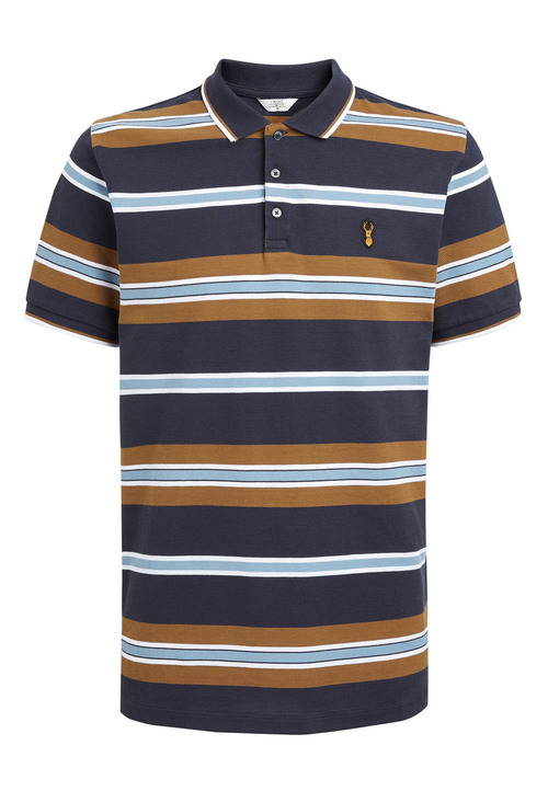 Next Varied Stripe Polo