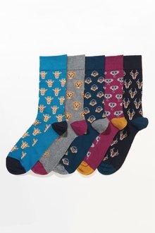 Next Animal Pattern Socks Five Pack - 240075
