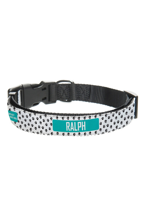 Personalised Pet Collar