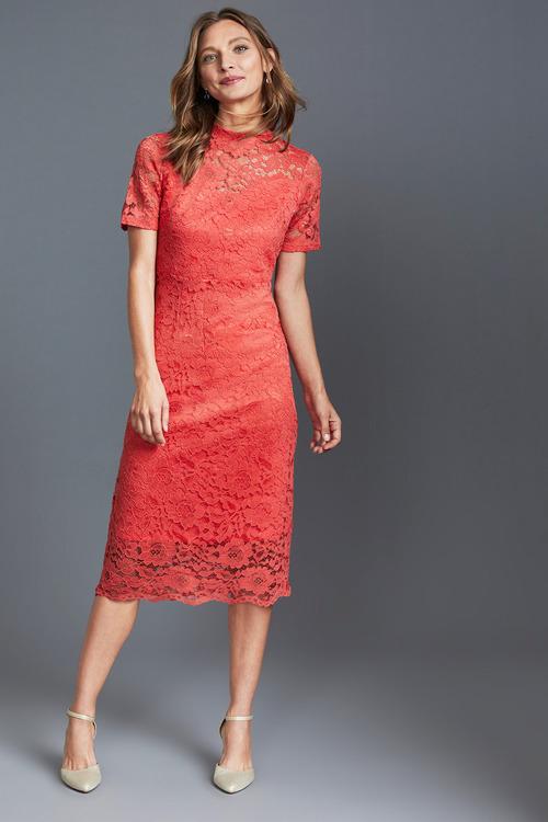 Capture Lace Dress