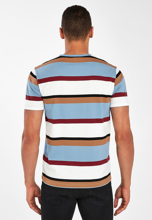 Next Stripe Regular Fit T-Shirt