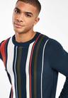 Next Vertical Stripe Crew Sweater