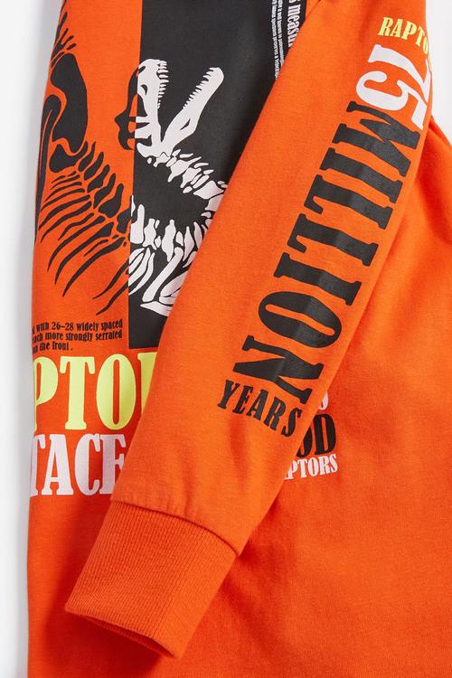 Next Orange Dinosaur Long Sleeve Graphic T-Shirt (5-16yrs)