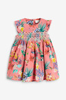Next Floral Dress With Matching Knickers (0mths-2yrs)