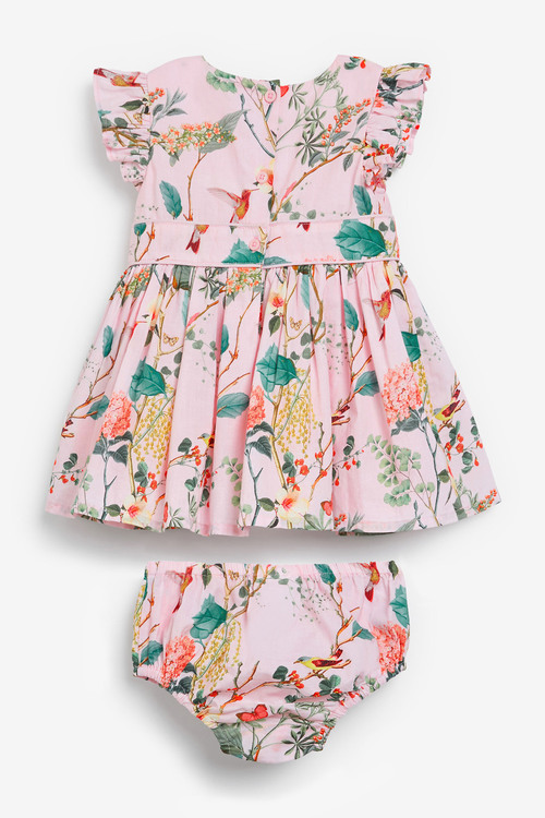 Next Floral Prom Dress With Knickers (0mths-2yrs)