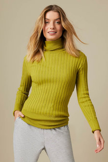 Capture Ribbed Knit Roll Neck Sweater - 254090