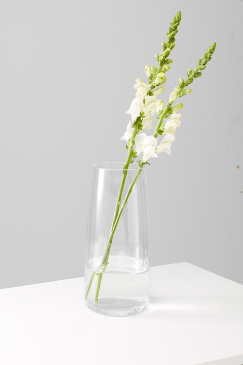 Talia Glass Vase