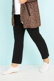 Plus Size - Ponte Pant - 255714