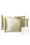 Royal Comfort Champagne Silk Pillowcase Twin Pack