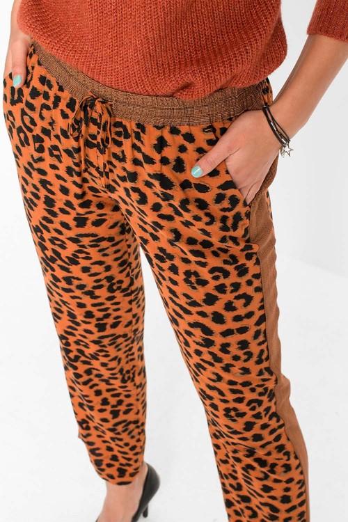 Urban Animal Print Jogger Pants