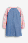 Next Raglan Dress (3-16yrs)