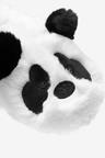 Next Panda Slippers (Older)