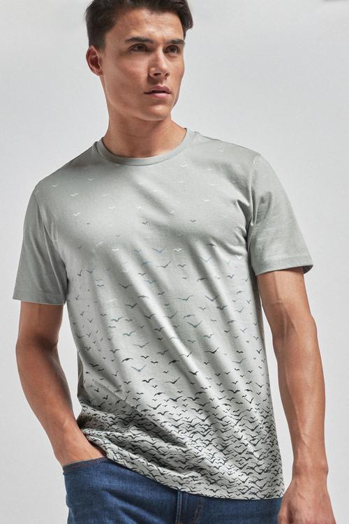 Next Regular Fit T-Shirt
