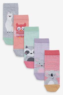 Next 5 Pack Animal Socks - 268207