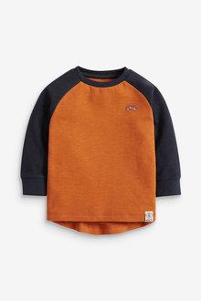 Next Long Sleeve Cosy Colourblock T-Shirt (3mths-7yrs) - 269342