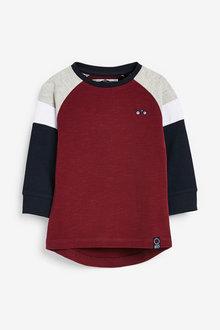 Next Long Sleeve Cosy Jersey Colourblock T-Shirt (3mths-7yrs) - 269365