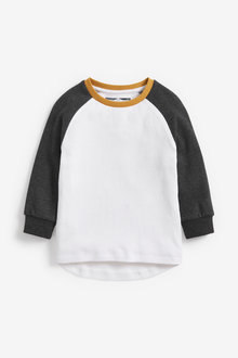 Next Long Sleeved Raglan Textured Jersey T-Shirt (3mths-7yrs) - 269386
