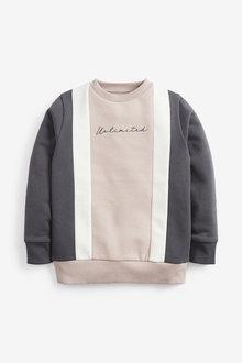 Next Vertical Panel Crew Sweatshirt (3-16yrs) - 270694