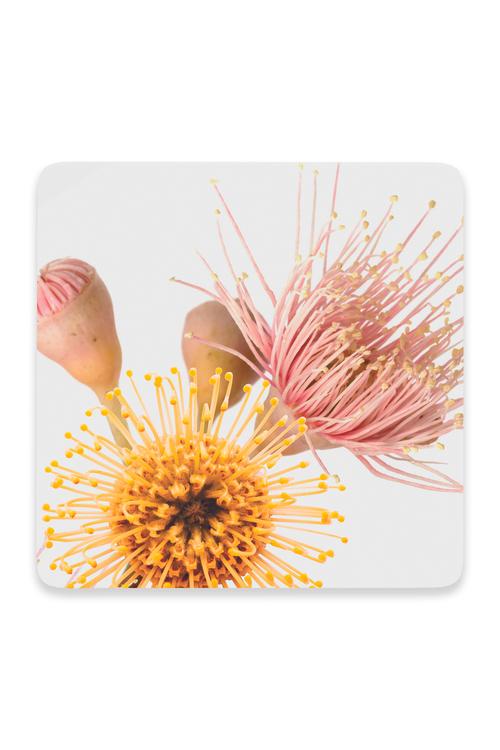 Splosh Flourish Coaster Pack