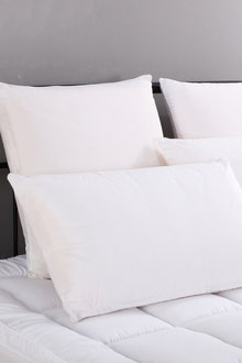 Ramesses Tencel Pillow Four Pack - 272052